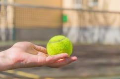 A tennis ball on a children`s hand. stock photos