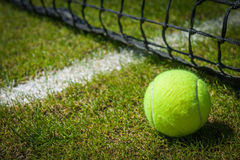 Tennis ball. Close-up near the net on a grass court with a white marking royalty free stock images