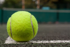 Tennis ball. On a tennis  court Royalty Free Stock Photo