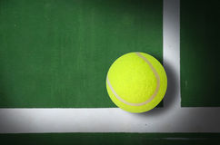Tennis ball. On court grass play game background sport for design Royalty Free Stock Image