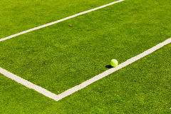 Tennis Ball on the Court. The tennis Ball on the Court. Summer day Royalty Free Stock Photo
