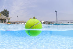Tennis ball floating in pool Royalty Free Stock Images