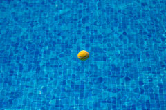 Tennis Ball floats in the Pool Stock Photography