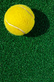Tennis ball on grass. Outdoor stock photo