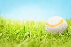 Tennis ball on grass royalty free stock photos