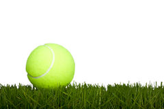 Tennis ball & grass Royalty Free Stock Photography