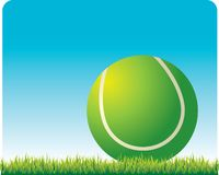 Tennis ball on the grass. Close up picture of a tennis ball on the grass Royalty Free Stock Photos
