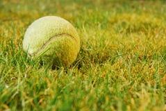 Tennis ball on grass. A yellow tennis ball on grass stock photo