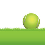 Tennis Ball in Grass Background Illustration Stock Images