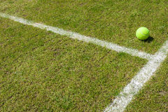 Tennis ball on a grass court Stock Photo