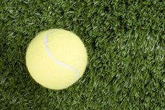 Tennis ball and grass Royalty Free Stock Photography
