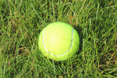 Tennis Ball on grass tennis court Stock Photography