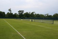 Tennis ball on grass tennis court. Tennis ball on grass  tennis court royalty free stock photos