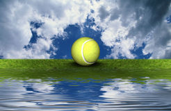 Tennis ball on the green grass Royalty Free Stock Photo