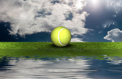 Tennis ball on the green grass Royalty Free Stock Image