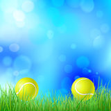 Tennis ball on a green grass Royalty Free Stock Images