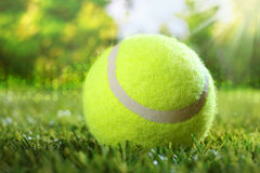 Tennis ball on green grass. Under the hot rays of the summer sun conceptual of freedom and enjoyment of a sporty healthy outdoor lifestyle and summer vacation royalty free stock photos