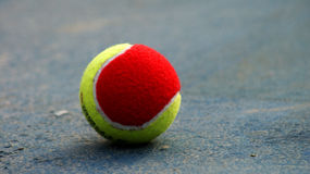TENNIS BAll. Is on the ground. Close up and portrial with tele len royalty free stock images