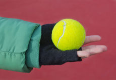 Tennis ball is in the hand Stock Image