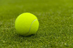 Tennis ball on a lawn court Royalty Free Stock Image