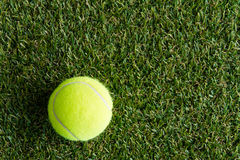 Tennis ball on the lawn Stock Photos