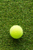 Tennis ball on the lawn Stock Images