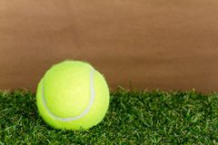 Tennis ball on the lawn Stock Image