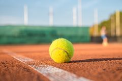 Tennis ball on white line on a sunny day. Tennis ball lying on white line on tennis court on sunny day Royalty Free Stock Images