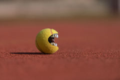 Tennis Ball Mouth Royalty Free Stock Image