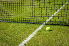Tennis ball. Near the net on a grass court with a white marking royalty free stock photo