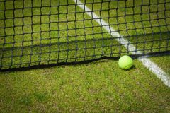 Tennis ball. Near the net on a grass court with a white marking stock photography