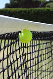 Tennis ball in net. Stock Images