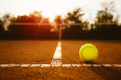Tennis ball with net in background Royalty Free Stock Image