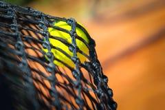 Tennis ball in net Stock Photos