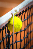 Tennis ball in net Royalty Free Stock Image
