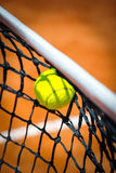 Tennis ball in net Stock Image