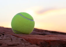 Tennis ball. On old brick surface Stock Image