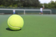 Tennis ball. With players in Background royalty free stock image