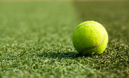 A tennis ball. On the playground Stock Image