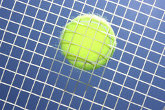 Tennis ball and racket. On the blue background Stock Photos