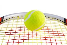 Tennis Ball on a racket. Isolated on a white background Stock Image