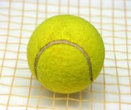 Tennis ball on the racket Royalty Free Stock Image
