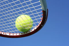 Tennis Ball in Racket. A tennis ball on a racket against the sky Royalty Free Stock Image