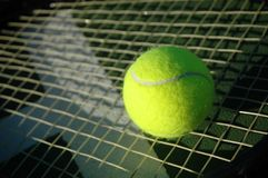 Tennis Ball on Racket Royalty Free Stock Photos