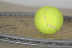 Tennis ball on racket. Stock Photos