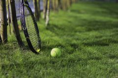 Tennis ball with racket on wet grass after raining Stock Image