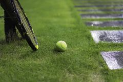 Tennis ball with racket on wet grass after raining Stock Images