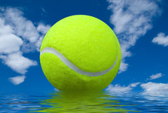 Tennis ball with reflection Stock Images
