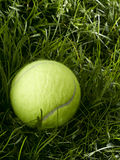 Tennis Ball. In tall green Grass Royalty Free Stock Photos