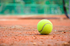 Tennis ball Stock Image